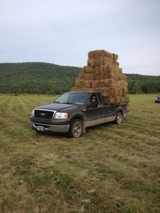 Hay making on the field in front of the house.