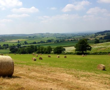 Follow in the footsteps of Shakespeare on one of our local country walks.