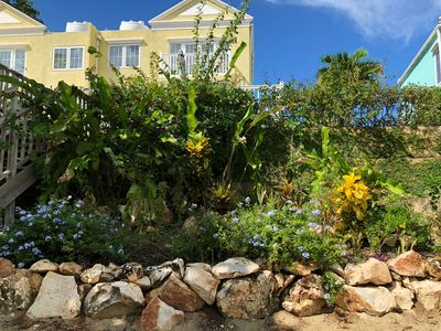 The garden at Little Bay Townhouse.  Our gardener Jovian does such a great job!