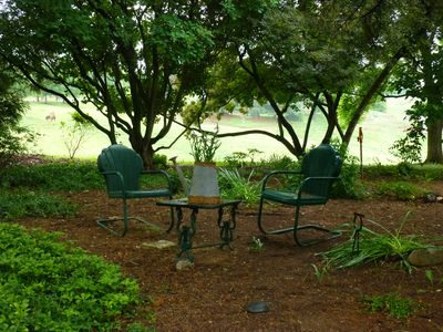 The tea garden provides the perfect spot to sit in the shade and enjoy the farm.