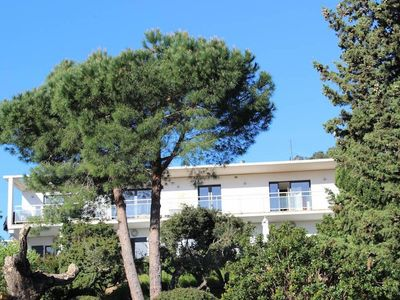 Photo for One bedroom apartment with pool 12 x4 secure Cavalaire