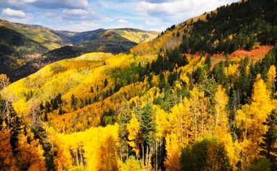Quick drive up to Cripple Creek - Stunning views in the Fall!!!