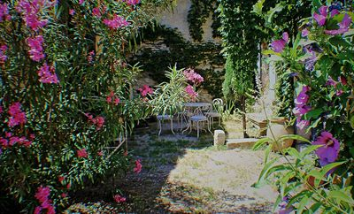 Photo for Village mas with courtyard 10 minutes from Avignon 6 persons