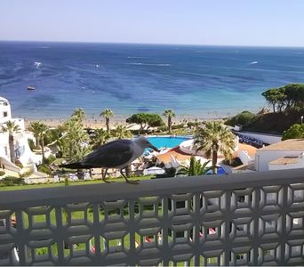 Photo for Muthu Oura View Beach Club, very nice apartment, on the beach front.