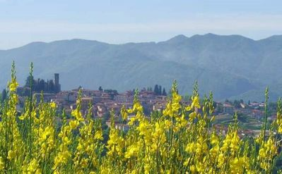 Photo for Holiday villa for rent in Tuscany with breathtaking view