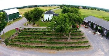 Huff Estates Winery, Bloomfield, Ontario, Canada