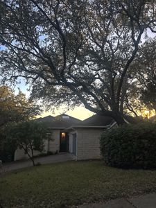 Photo for Bright house set in the trees! Short drive to all that Austin offers