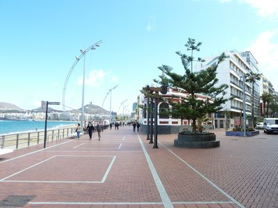 Photo for Studio on the first beach row in Las Canteras
