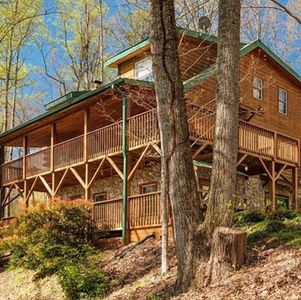 Gorgeous Log Cabin w/Mtn Views, Fenced Yard, 15 Minutes to downtown Asheville!
