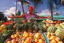 Warm Tropical Welcome... fruits, sunny days and cool island breeze!