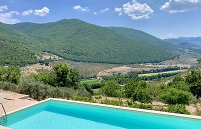 Photo for Idyllic, luxury house with large pool set in olive grove with unrivalled views