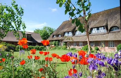 Photo for Rural charm, modern living under thatch in the old farmhouse up to 6 pers