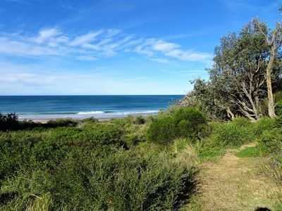 The start of the walking track to the beach from the backyard