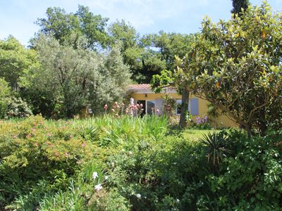 Photo for Rent a gite at the foot of the Luberon mountain