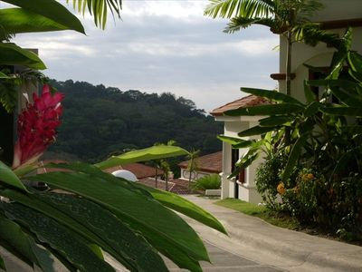 The condo is located on a hill with beautiful views of the ocean and jungle
