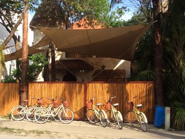 Elegant 4 bedroom Villa with free  airport Transfer & Bikes included