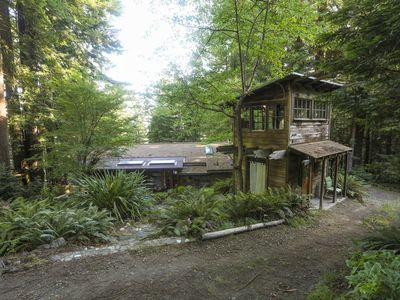 Photo for Redwood Forest Getaway