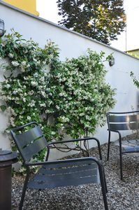 Photo for NAVIGLI LOFT with private GARDEN