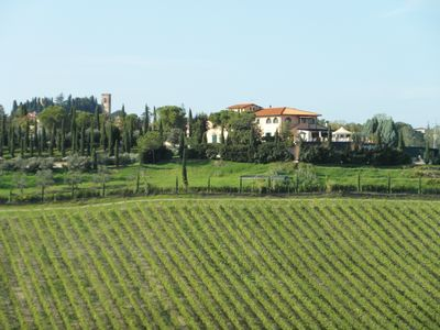Photo for Three-room apartment in a farmhouse immersed in the Tuscan countryside between vineyards and olive groves