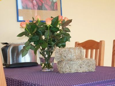 Photo for 1BR Apartment Vacation Rental in Glashagen