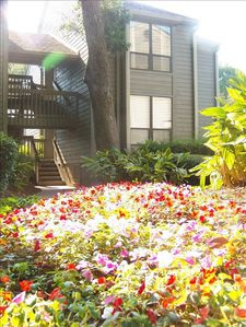 Photo for 1st Floor - 1BR - in Heart of Harbourtown/Sea Pines Steps to Golf/Beach