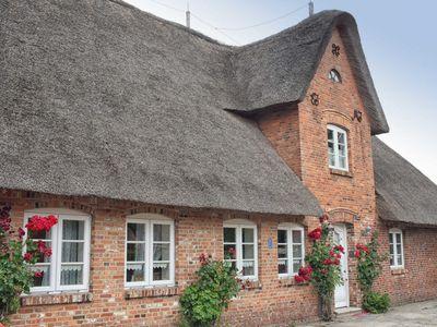 Photo for Apartment / app. for 3 guests with 30m² in Wrixum auf Föhr (125826)