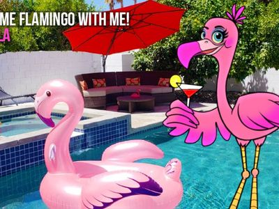 Photo for Oasis Paradise in the Desert! LET'S FLAMINGLE!!!