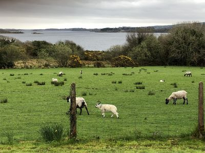 Photo for Very Secluded Irish House with beautiful views