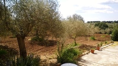 Photo for 5BR Villa Vacation Rental in Alghero, Sardegna