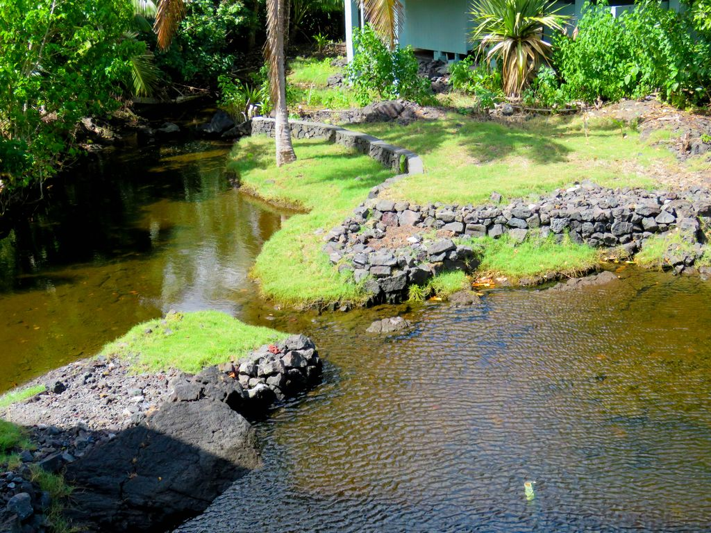 views of wai opae tide pools from every roo vrbo