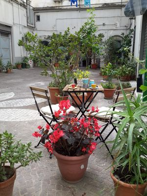 """Photo for Donna Manù Holiday Apartment. """"A Pinch of Latin America in the Heart of Naples"""""""