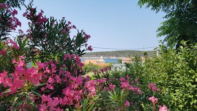 Photo for Holiday apartment typical country style, in a quiet location with sea views