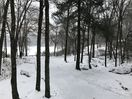 A color picture of shades of black and white over an iced over lake.