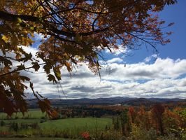 Photo for 1BR House Vacation Rental in Irasburg, Vermont