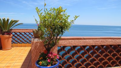 Photo for Unique fisherman's house in Collioure, stunning sea view, 5 stars
