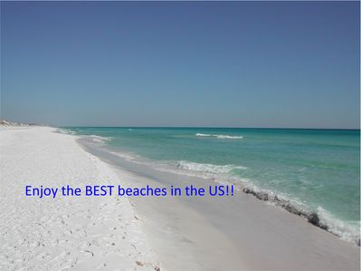 Secluded, private, gorgeous.  Come enjoy Walton Dunes and our beaches.