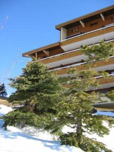 Photo for Apartment/ flat - Alpe d'Huez