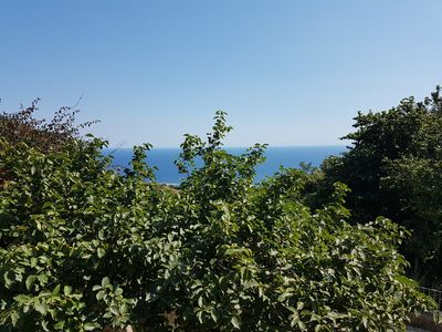 Photo for An oasis in the greenery of Ischia