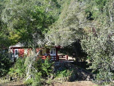 Photo for RURAL COTTAGE WITH BARBACOA LA GUSTOZA TENERIFE NORTE