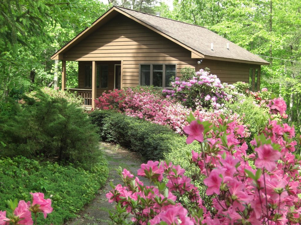 Secluded Romantic Mountain Cabin For 2 Fu Vrbo