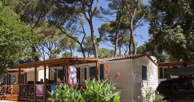 Photo for Holiday home for 6 guests with 32m² in Biograd na Moru (94964)