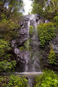 Photo for Nimbin waterfall retreat peaceful tranquil our own waterfall