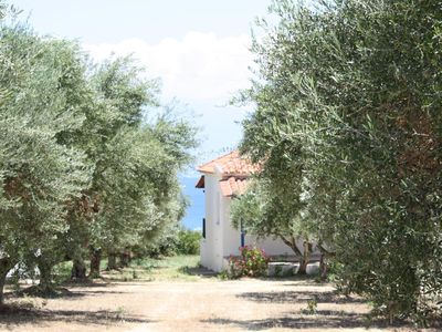 Photo for Enjoy calm idyll amid olive groves - holiday house with sea view | Messenia, Pel