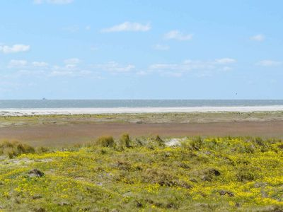 Photo for 4 person holiday home in Fanø