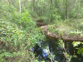 Photo for 1BR Campground Vacation Rental in Westville, Florida