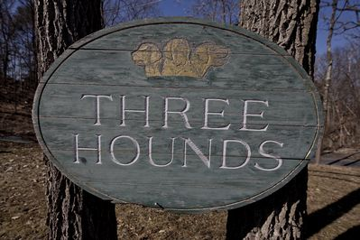 Welcome to The Hudson River Estate / Three Hounds