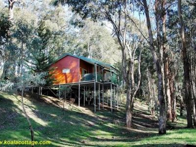 Photo for Koala Cottage at Fern Gulley Retreat