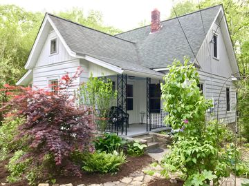 Pet Friendly Vacation Rentals in Black Mountain North