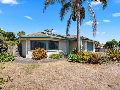 Photo for Palm Tree Haven - Papamoa Holiday Home