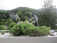 The good-good life in Baden Baden